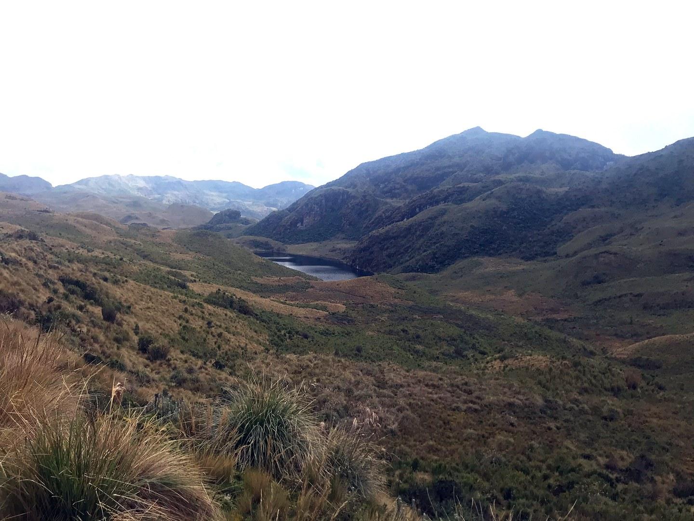 "In den Höhenlagen Ecuadors kommt der ""Páramo"" vor,"