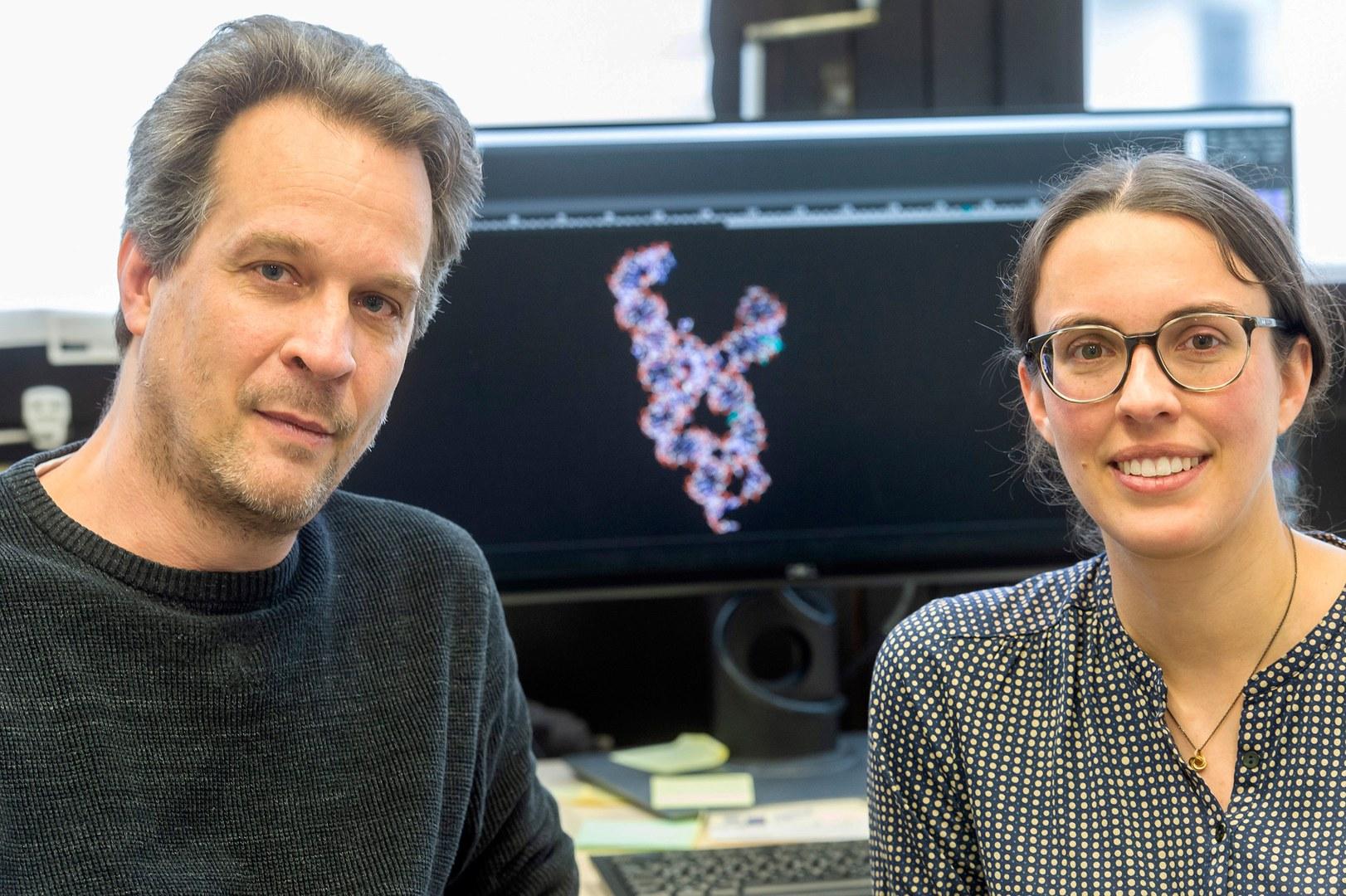 Haben eine neue Methode zur Strukturaufklärung langer Ribonukleinsäuren (RNA) entwickelt: