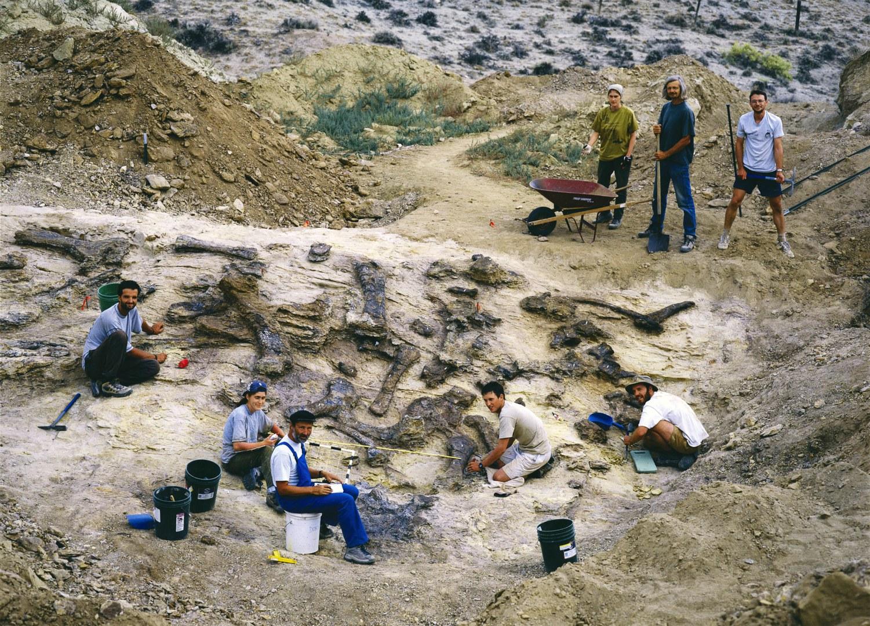 Die bei Ausgrabungen