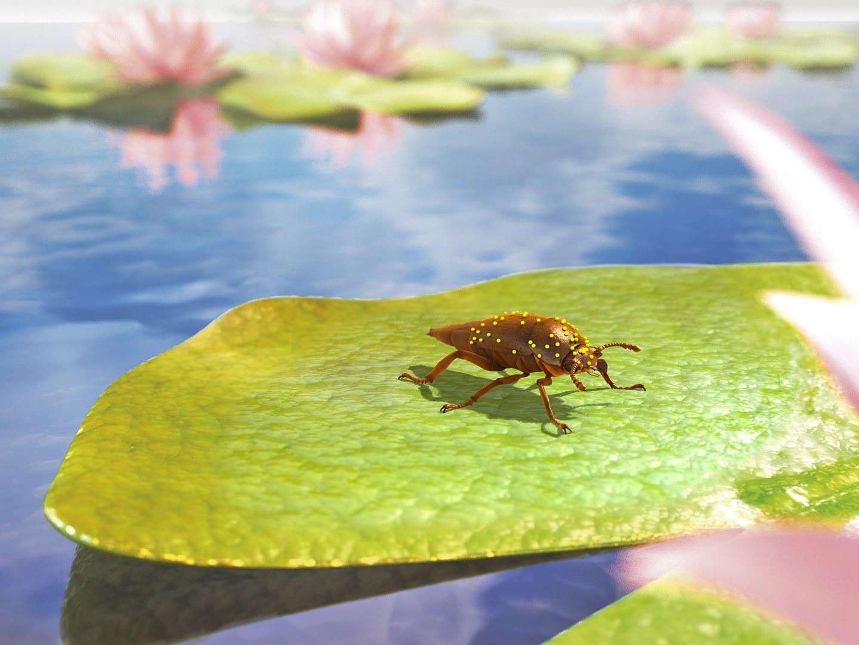 Rekonstruktion des Käfers