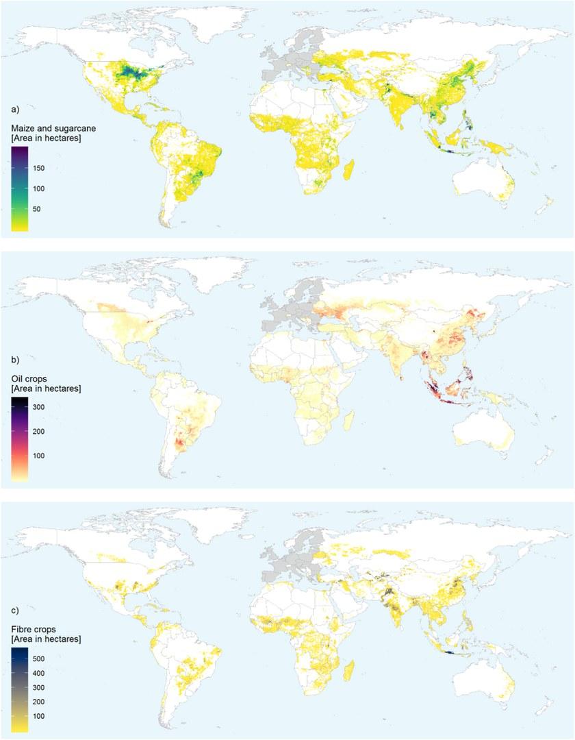 Die Grafik zeigt den Flächenverbrauch der EU außerhalb ihrer Grenzen
