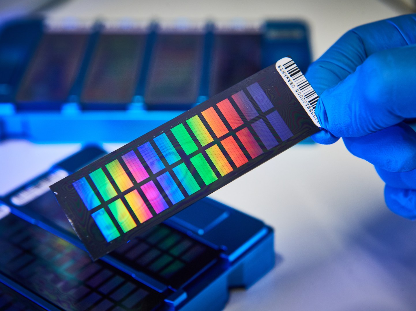 Im Forschungslabor am Bonner Institut für Humangenetik: