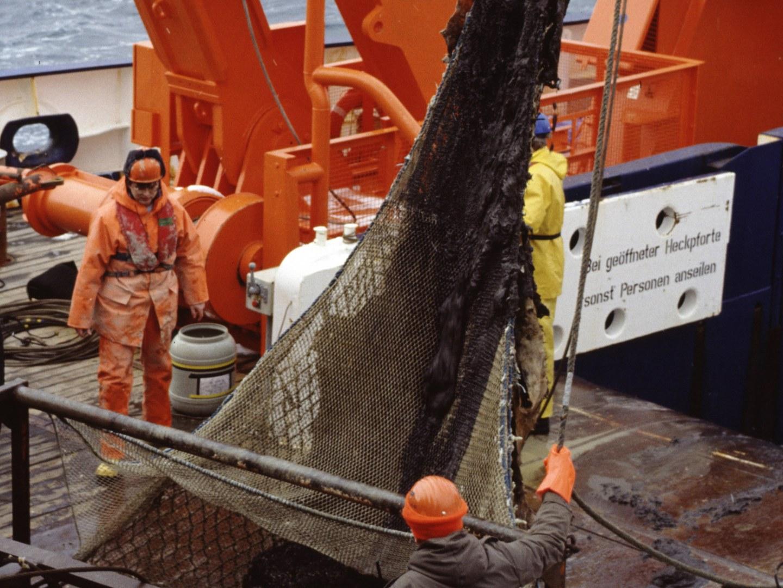 Dropstone vom Meeresboden geholt