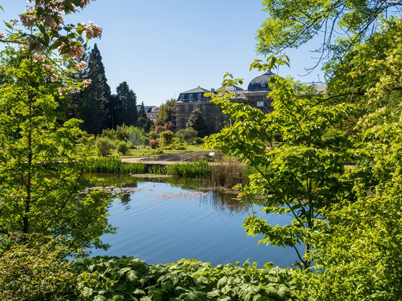Im Schlossgarten rund um das Poppelsdorfer Schloss