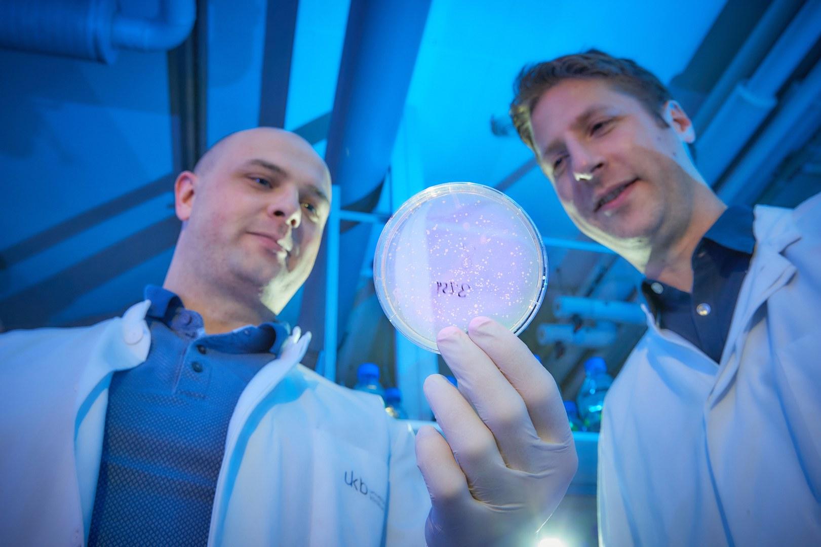 Mit Zellkultur im Labor: