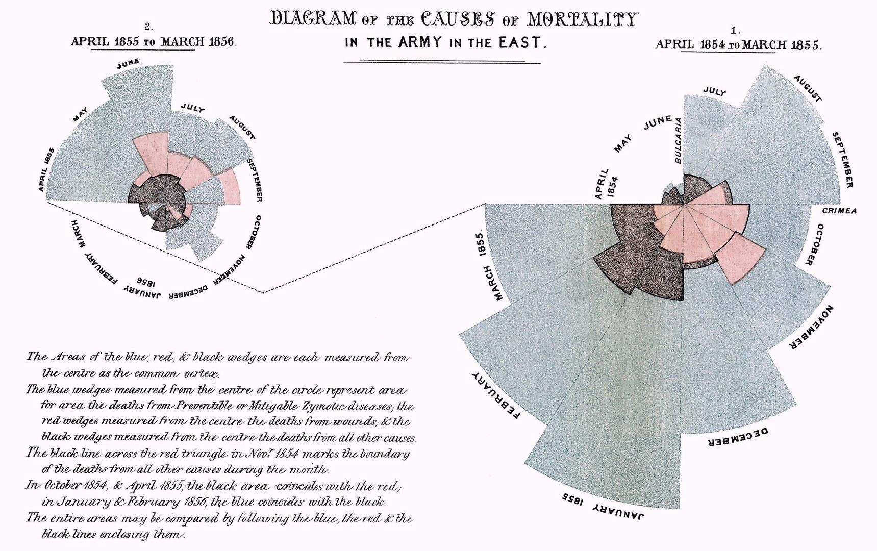 ›Rose Diagram‹ über die Verluste während des Krimkrieges