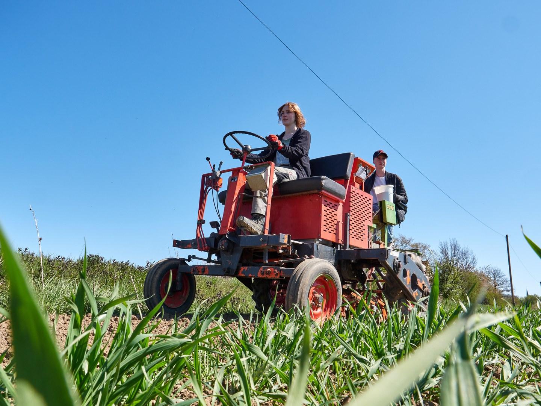 Anlage eines Biodiversitätsschutzstreifens:  Lea Kamps steuert die Saatmaschine und Maximilian Weitkemper  füllt das Saatgut nach.