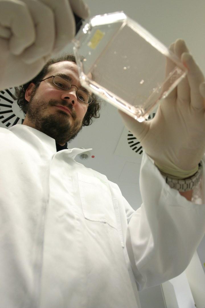 Bild Mit 40.000 Blutproben gegen Grippe & Co.