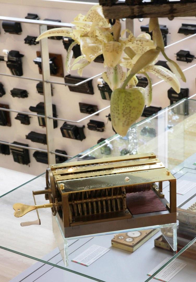 Orchidee und Rechenmaschine