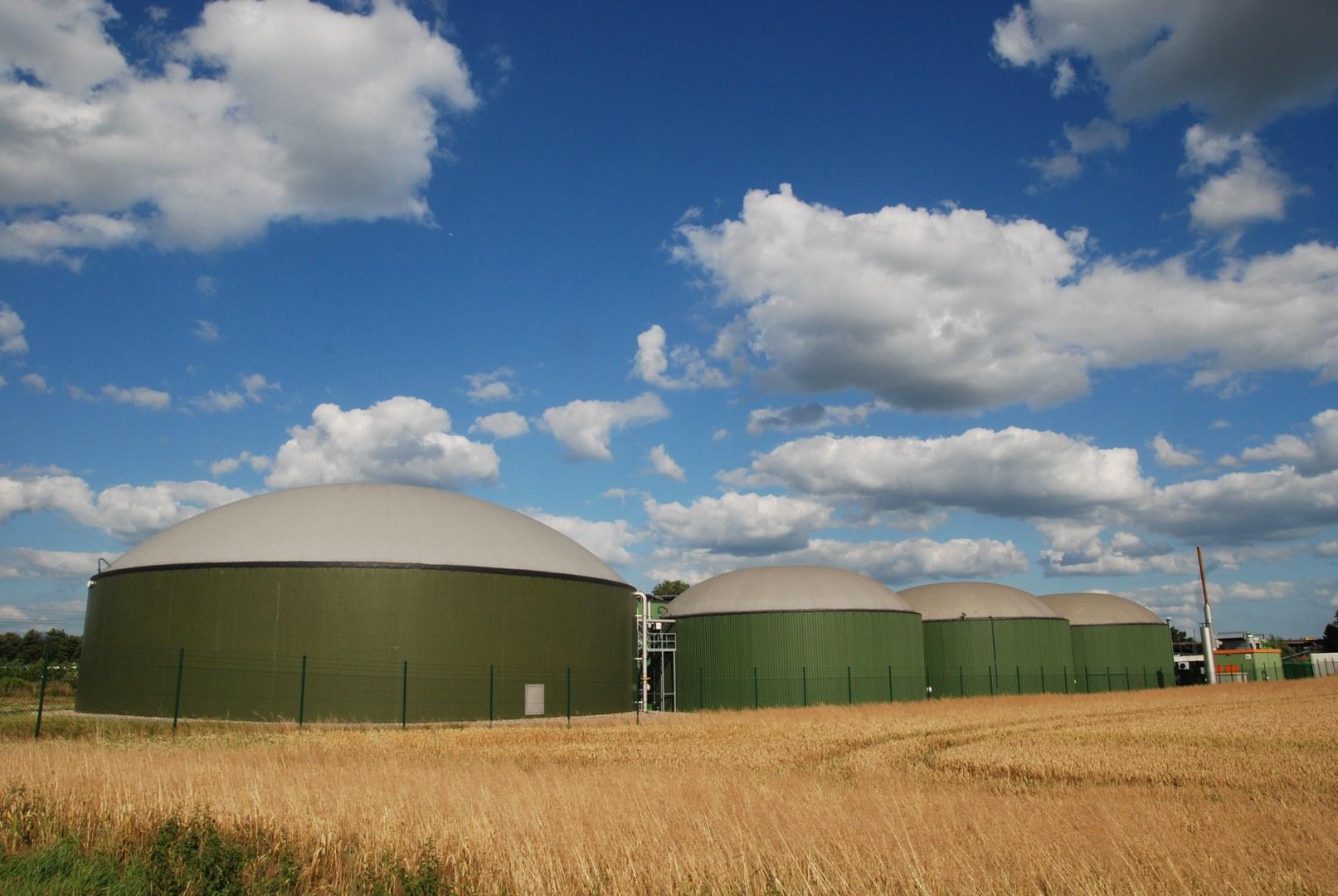 Biogasanlage: