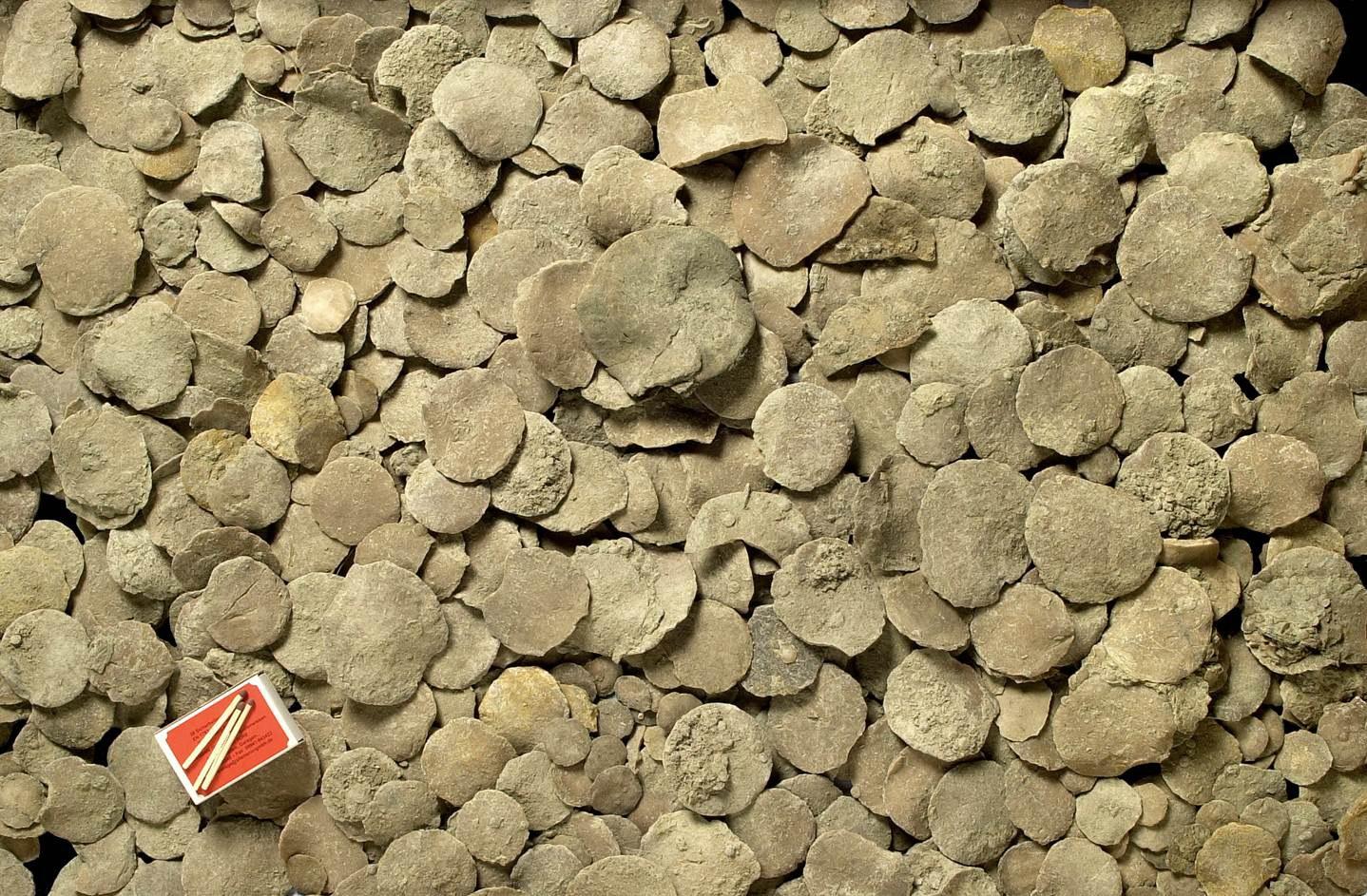 Fossile Foraminiferensande