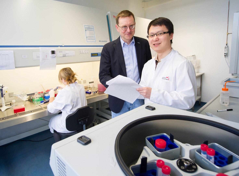 Kultivieren Fettzellen im Labor: