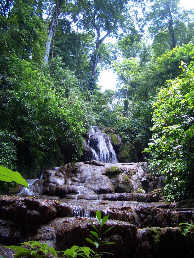 Im Palenque Nationalpark in Mexiko: