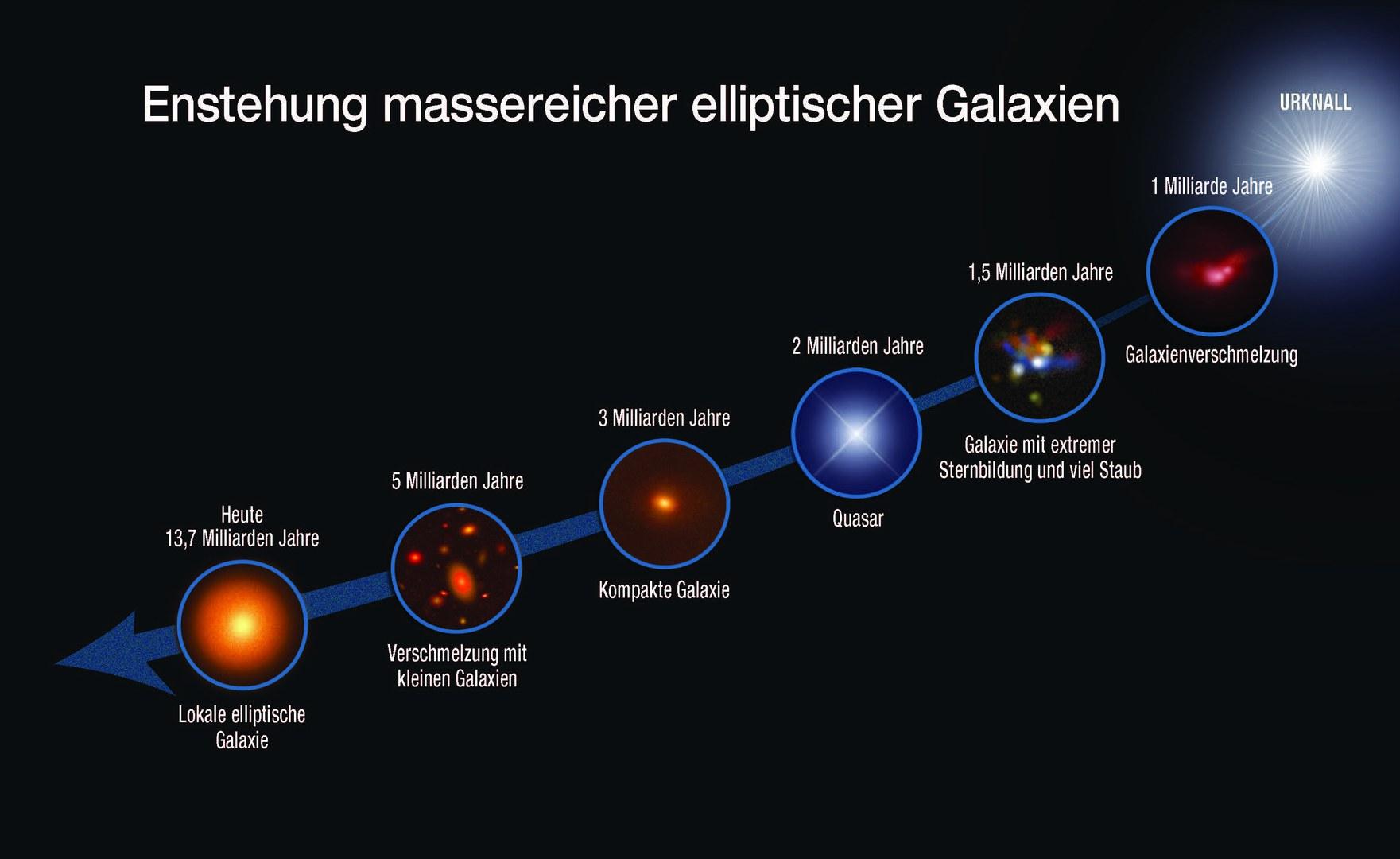 Die Grafik zeigt die evolutionäre Sequenz