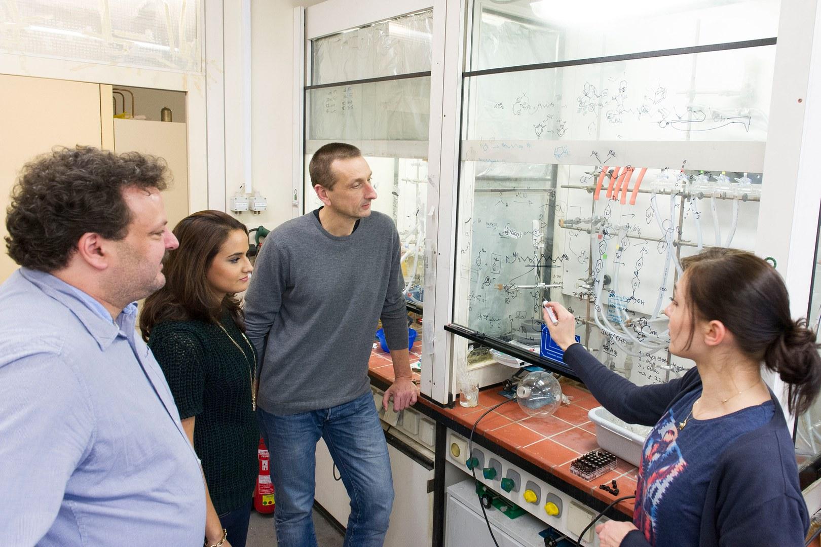 Suchen nach günstigeren und effizienteren Metallkomplexen für Katalysatoren:
