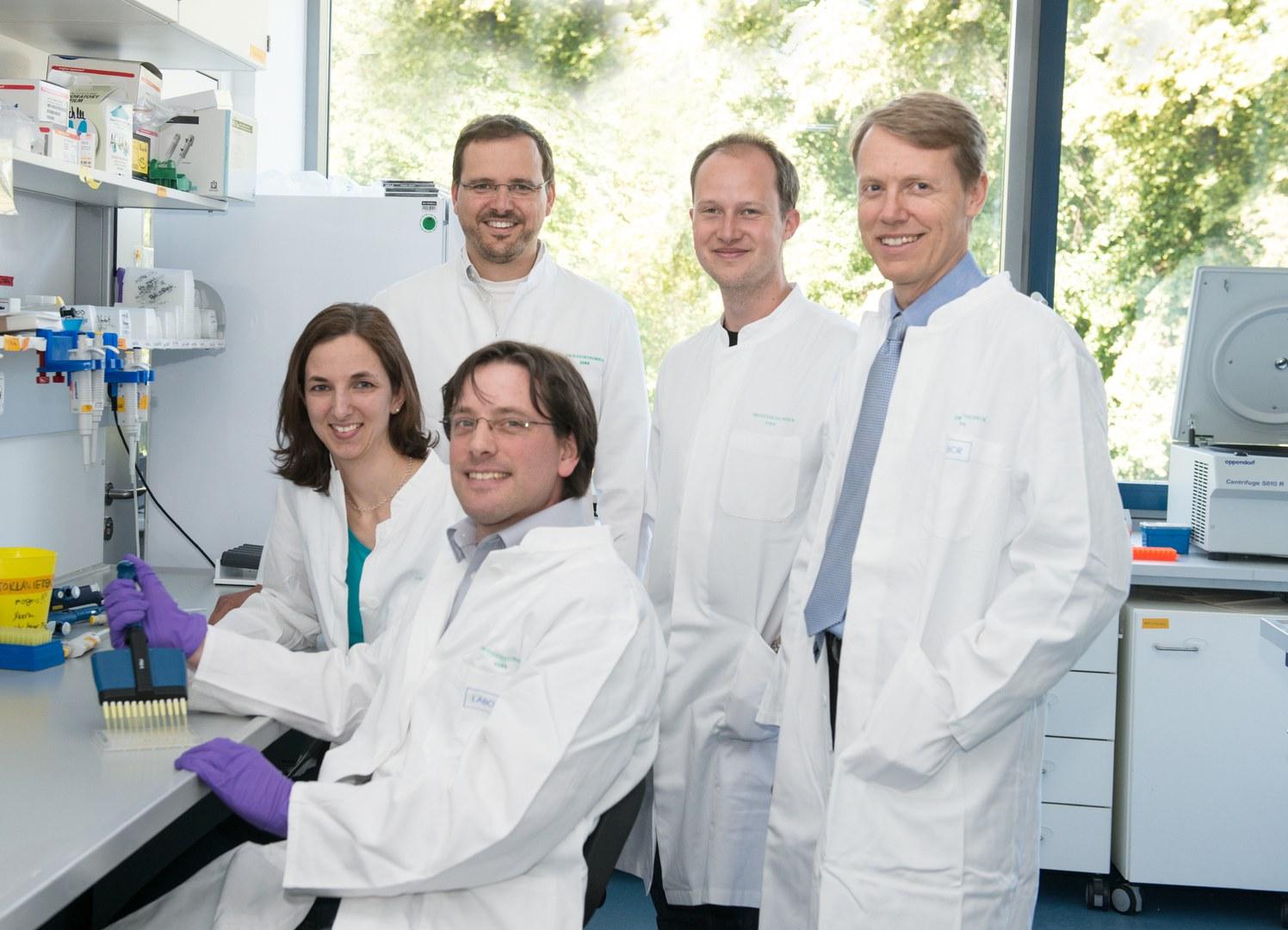 Messen im Labor die antivirale Immunantwort (von links):