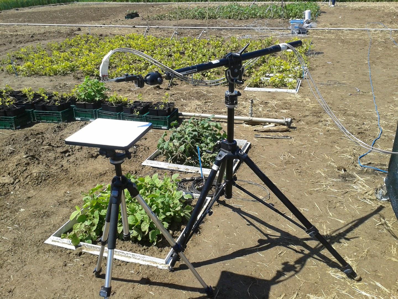 Das Bild zeigt Hyperspektralmessungen an Pflanzen: