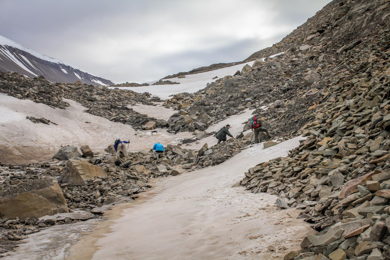 Fossiliensuchen in der Seiten-Moräne des Longyearbyen-Gletschers.
