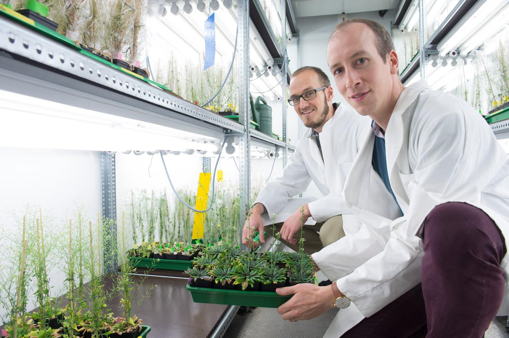 Dr. Markus Schwarzländer (rechts) und Dr. Stephan Wagner