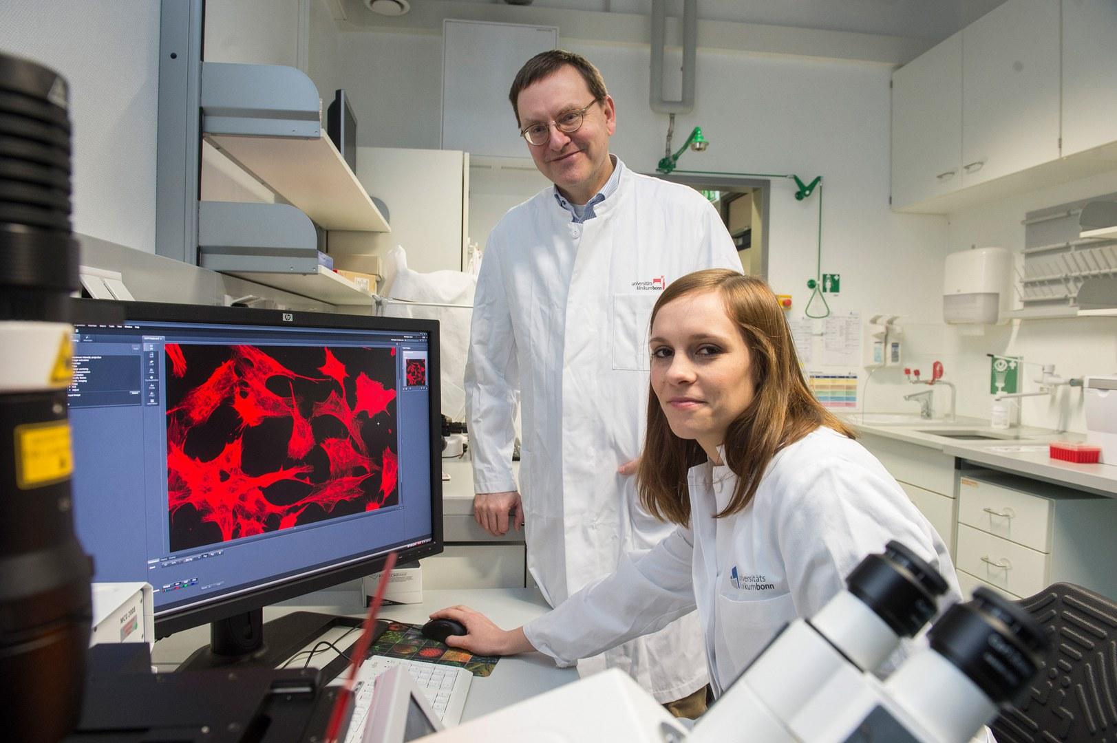 Untersuchen Fettzellen im Labor: