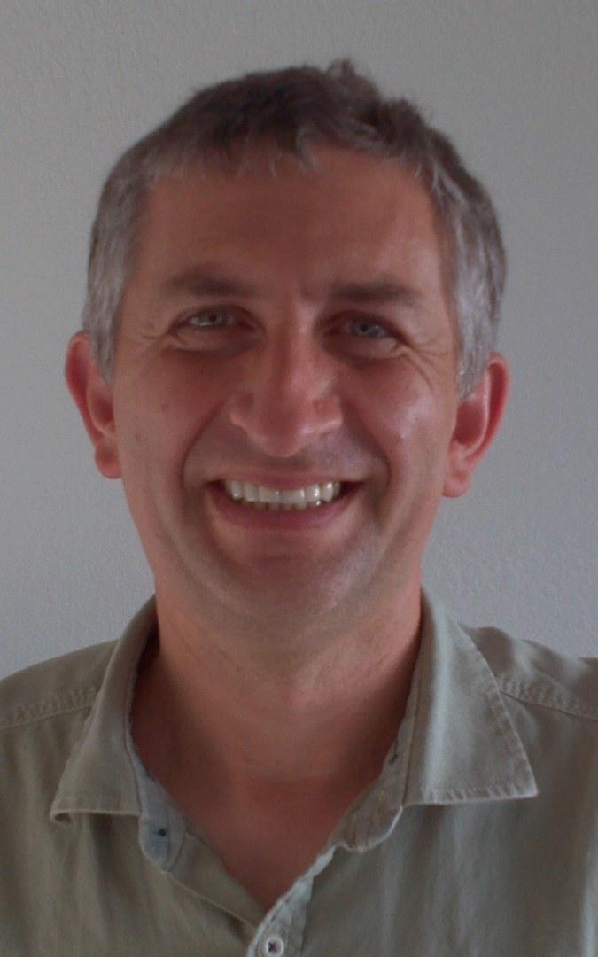 Prof. Dr. Daniel Tataru