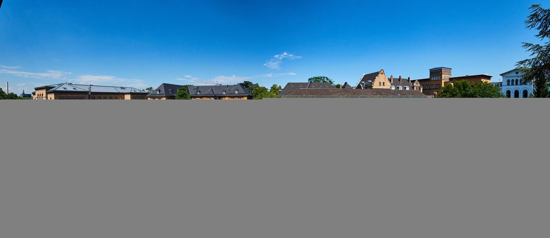 Die Gewächshäuser am Katzenburgweg 2 in Poppelsdorf:
