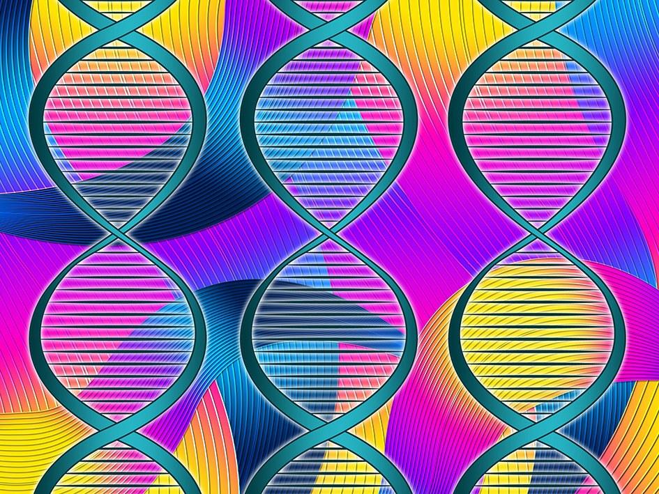 LIMES-Epigenetik-Internet-COLOURBOX103941954.jpg