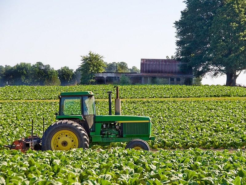 Landwirtschaft.jpg