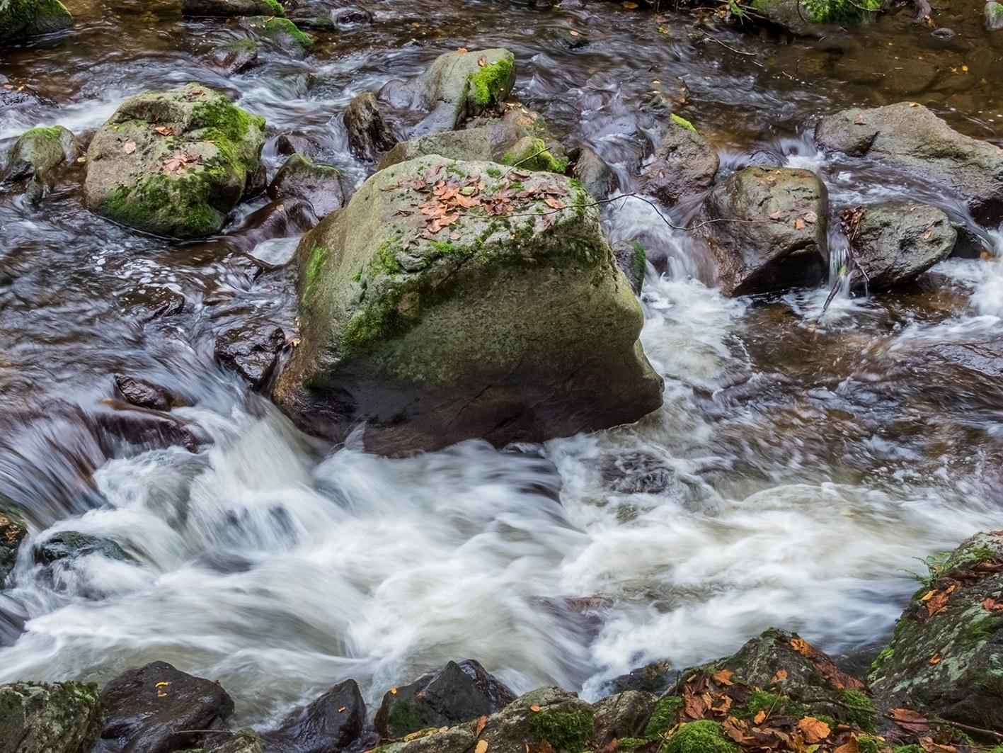 Wasser: