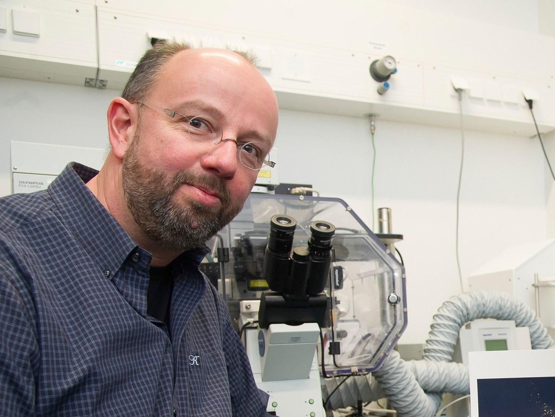 Prof. Dr. Jörg Höhfeld