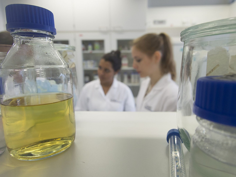 Biomedizinische Forschung