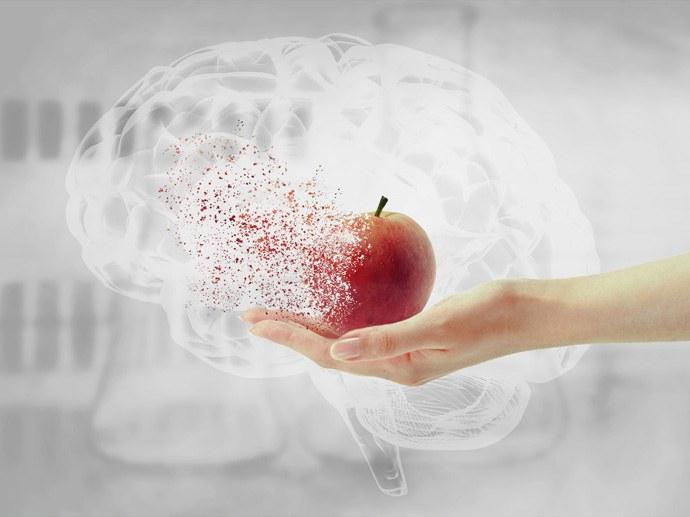 Beeinflusst die Ernährungsweise