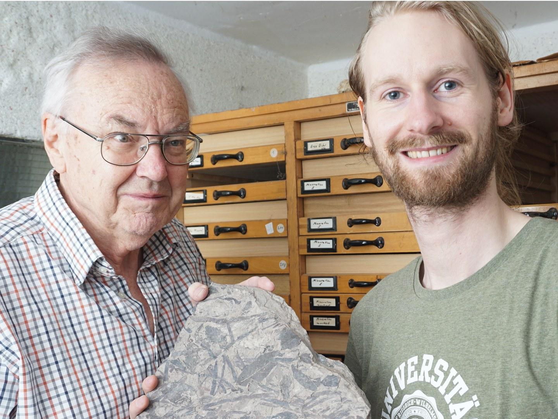 Fossil aus dem Braunkohletagebau