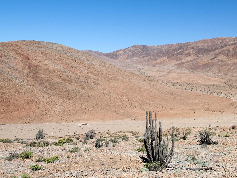 Atacama-Wüste in der Nähe der Kleinstadt Taltal im Norden Chiles