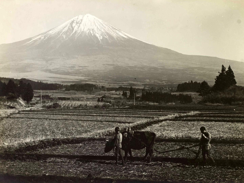 Der Fuji im Trautz-Nachlass