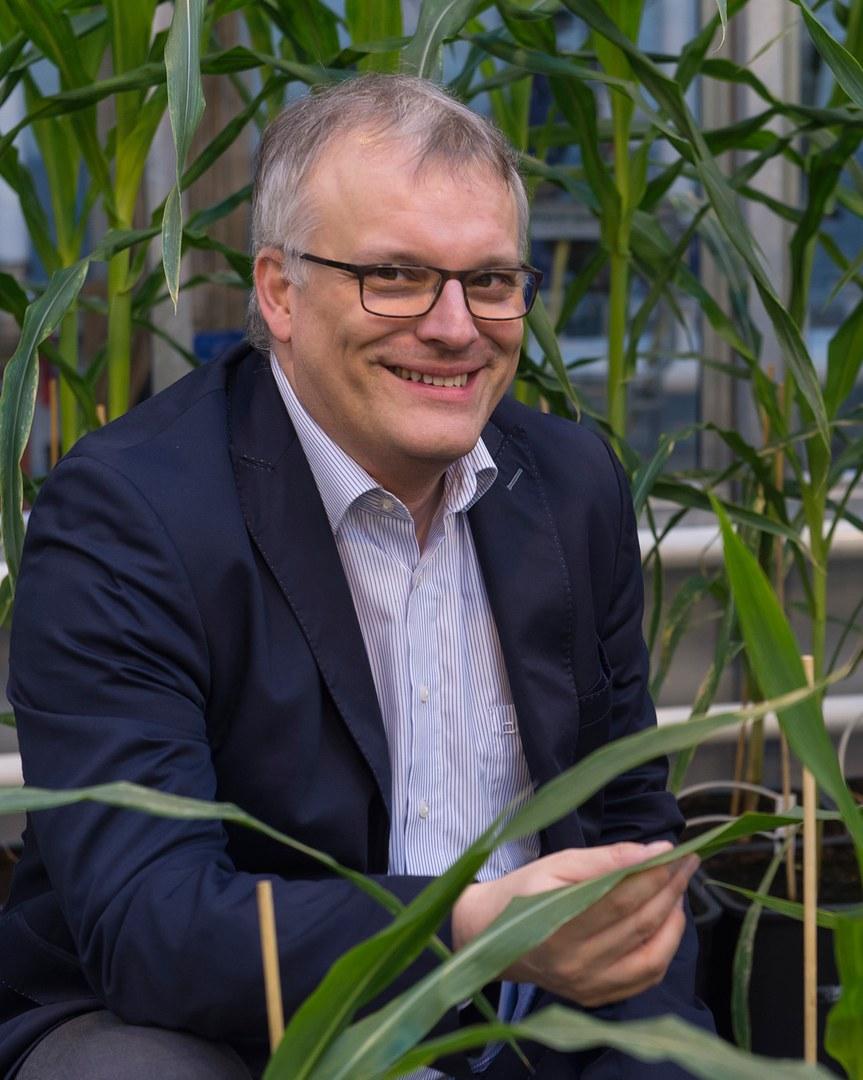 Prof. Dr. Frank Hochholdinger