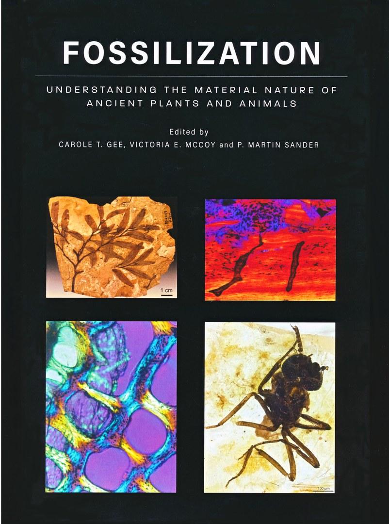 "Book ""Fossilization"""