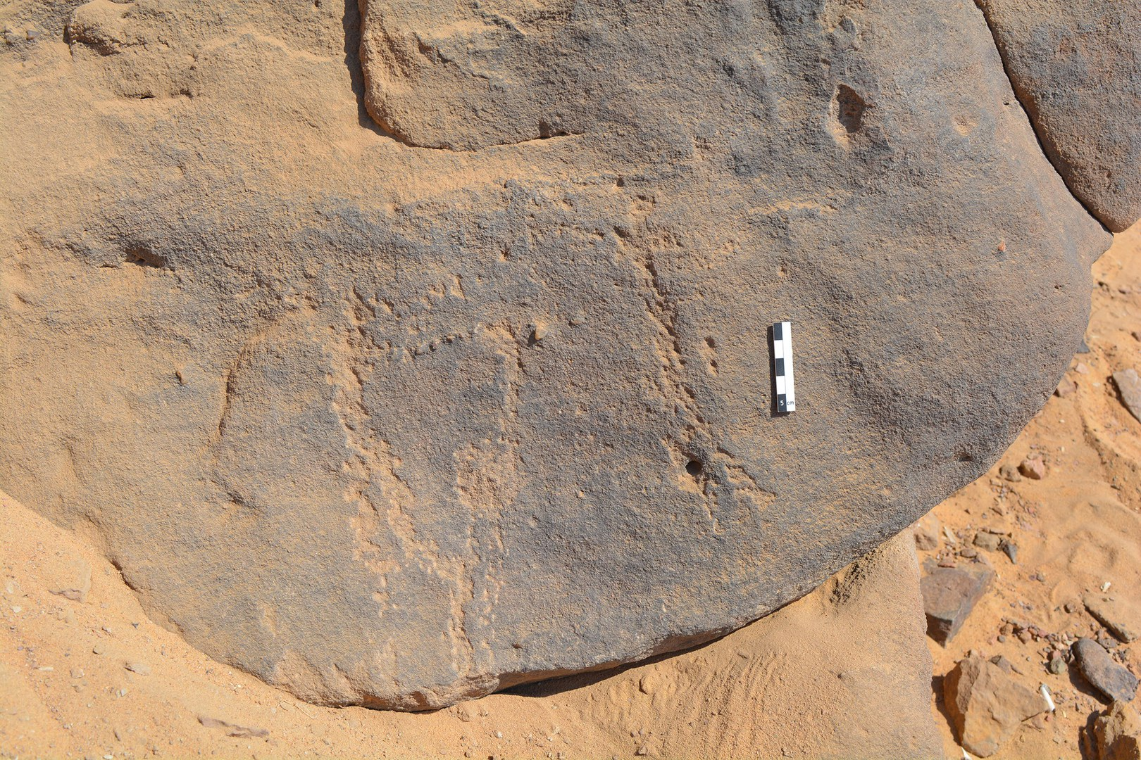 The around 6000-year-old rock engravings